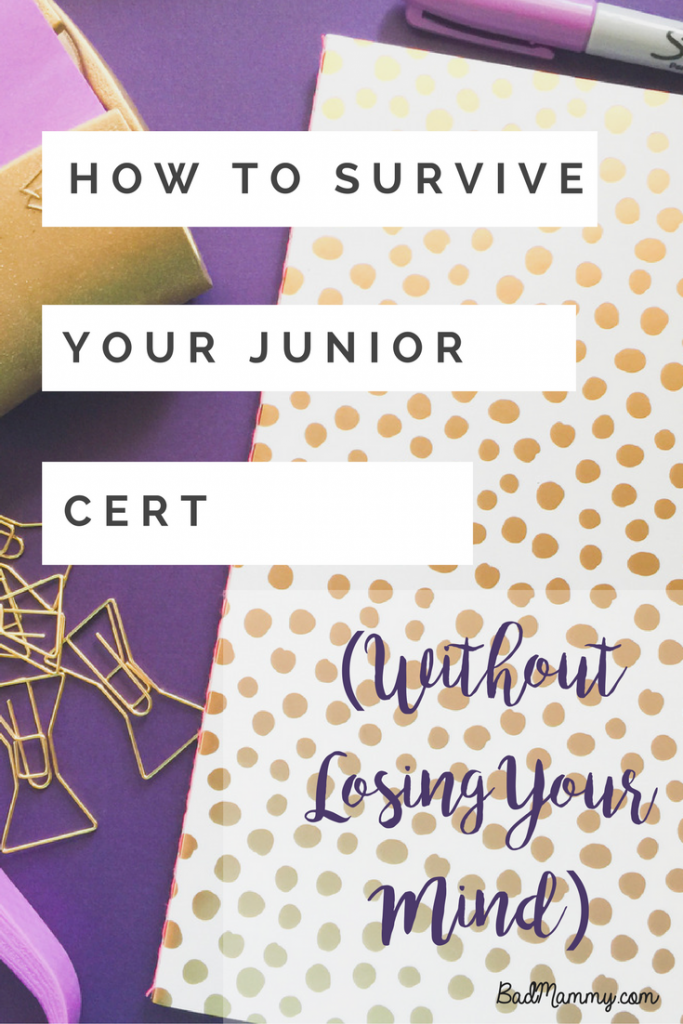 How to survive your juniorleaving cert