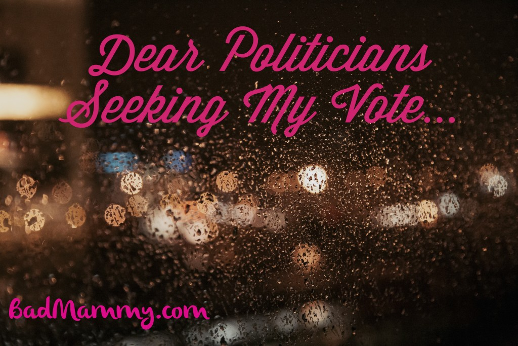 Dear Politicians Seeking My vot