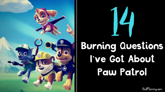14 burning questions paw patrol