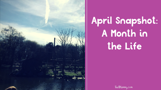 April Snapshot- A Month in the Life