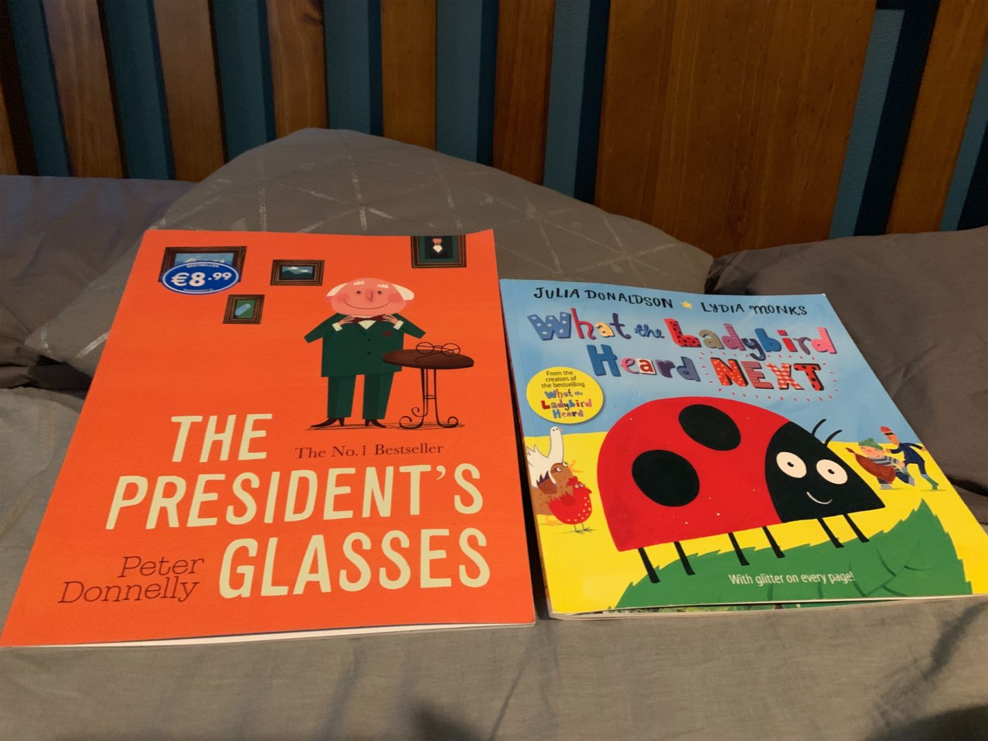 Julia Donaldson What The LadyBird Heard Next - The Presidents Glasses - Kids Books